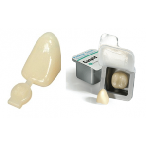 3-D Dental Crowns - Crown Forms