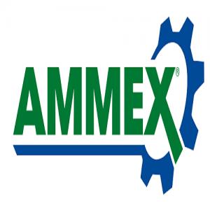 Ammex Store