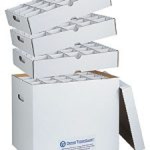 Ortho Technology Organizers / Ortho Model Archival System