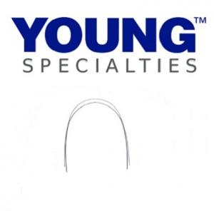 Young Specialties Nickel Titanium